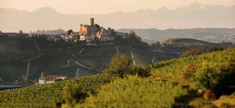 castiglione falletto landscape