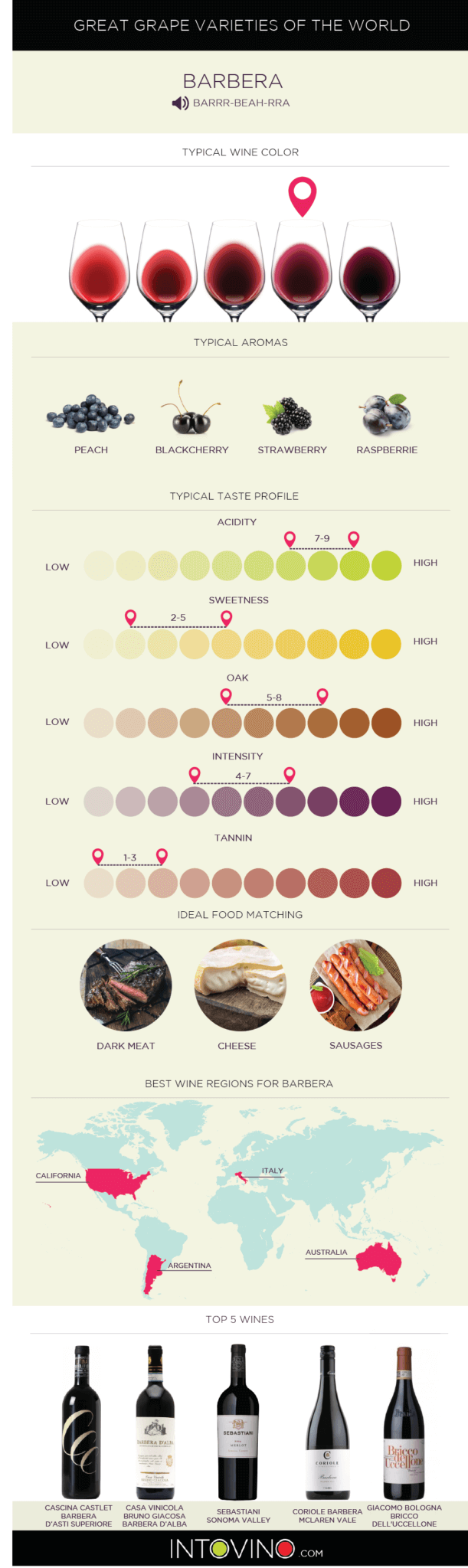 Barbera infographic guide