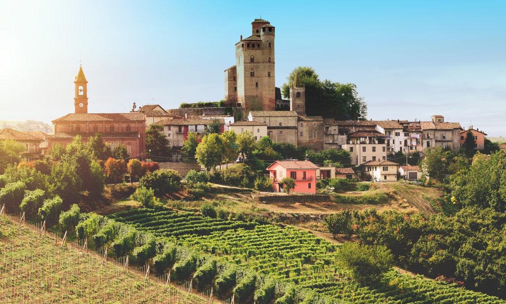 Medieval castle and vineyard