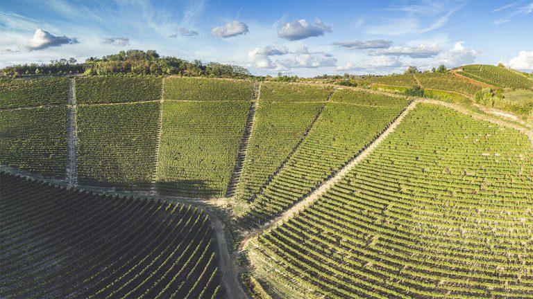 piedmont region wine map