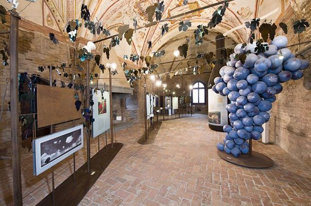 Museum of the Langhe grinzane cavour