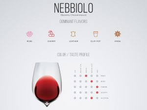 barolo and nebiolo wine tours