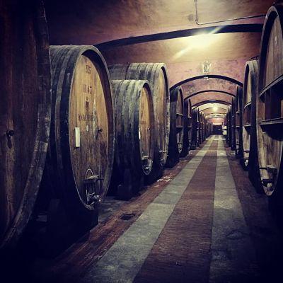 barolo wine tours vacation