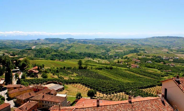Diano D'Alba Langhe Piedmont region