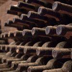 travel barbaresco wine tours guide