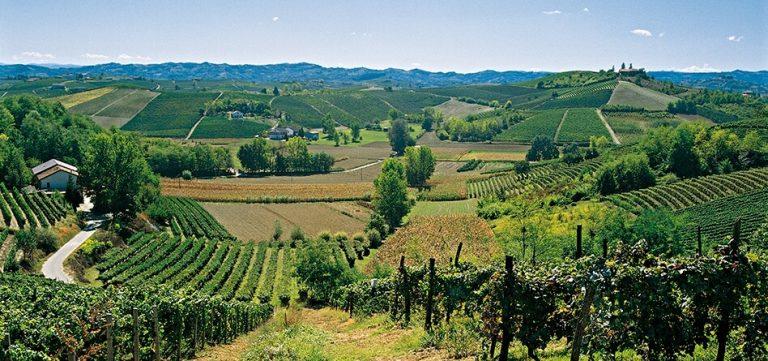 vinchio travel guide landscape