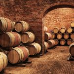 barolo wine tour wood vinery barrel