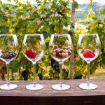 Alba wine tour