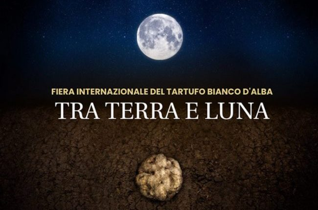 Alba travel guide International Alba White Truffle Fair