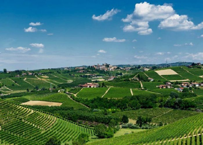 Barbaresco hunting tour, piedmont, italy