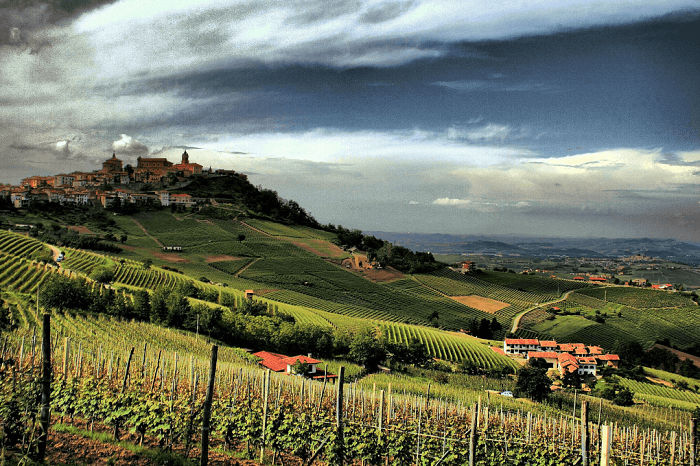 Barolo Village & vineyards