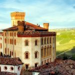 Barolo Castle wine tour