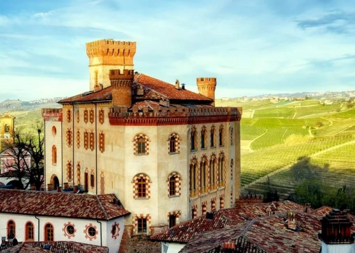 Barolo Castle wine tour