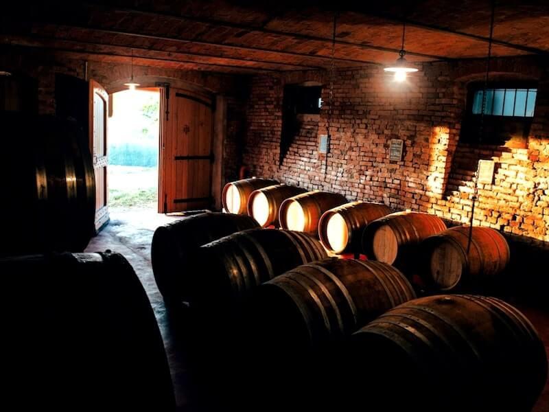 Barrel in neive Cellar