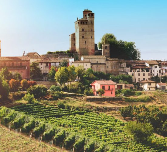 Medieval castle and vineyard