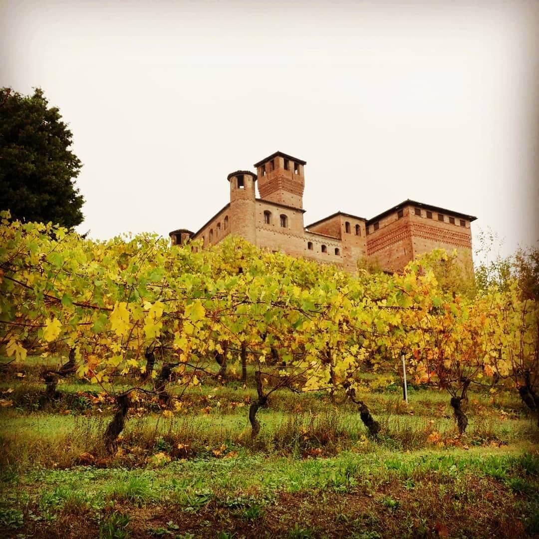 Grinzane Cavour Castle & Vineyard in Piedmont