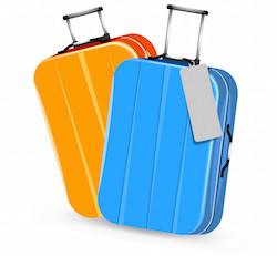 Luggage icon travel