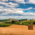 Nizza Monferrato wine tour