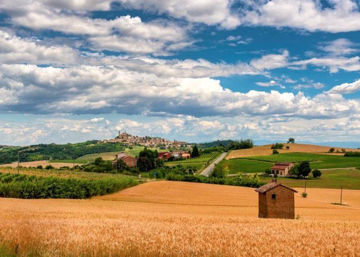 Nizza Monferrato wine tour