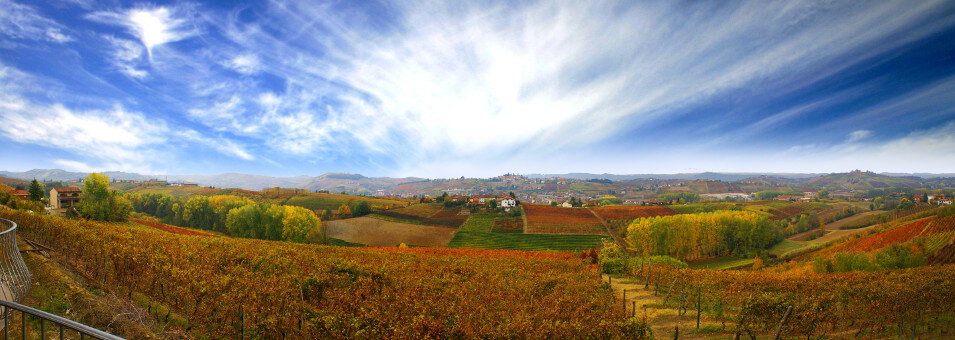 Nizza Monfettato and the Barbera landscape