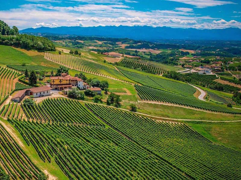 landscape in Monforte d'Alba Langhe