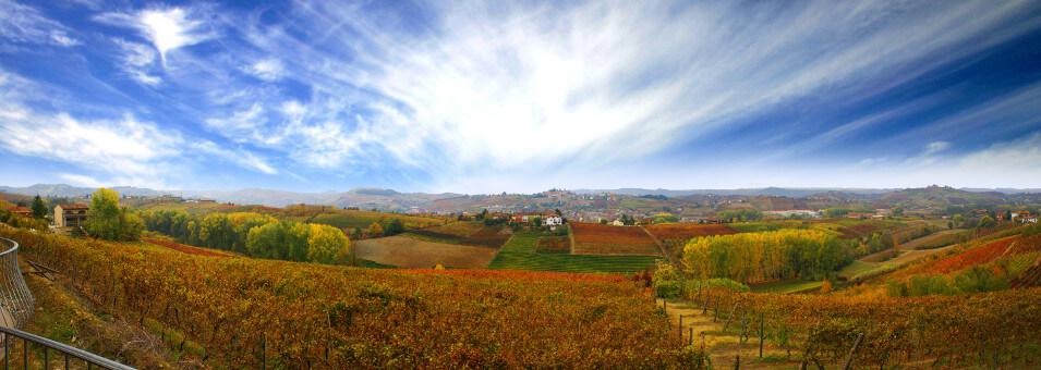 Neive landscape in Piedmont