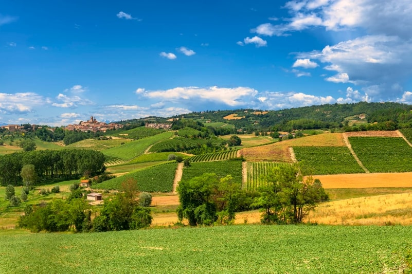 Country landscape of Monferrato in piedmont