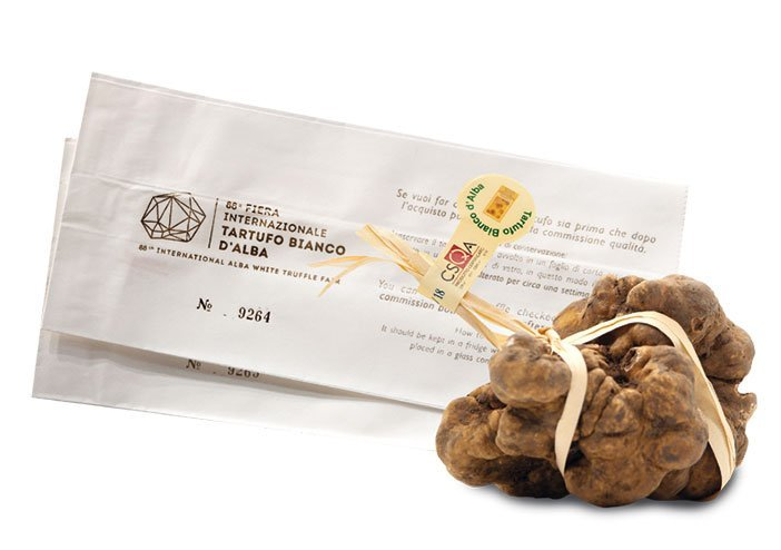 How to buy truffle at Alba Truffle Fair 2019