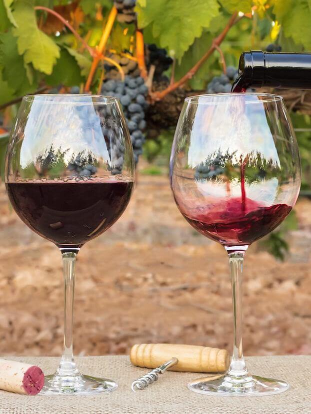 Red Wine glass tasting