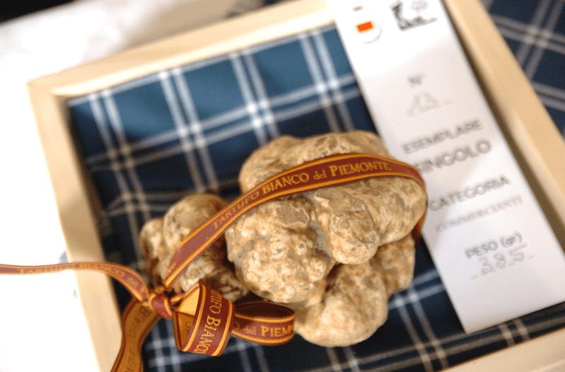 white truffle from piedmont moncalvo