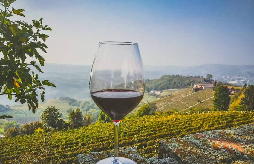 travel langhe wine testing experience